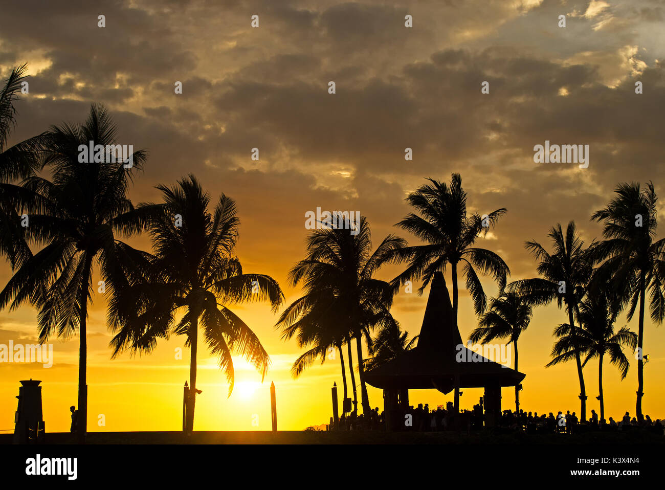 Silhouettes of palm tree during sunset in Kota Kinabalu, Sabah Borneo, Malaysia. - Stock Image