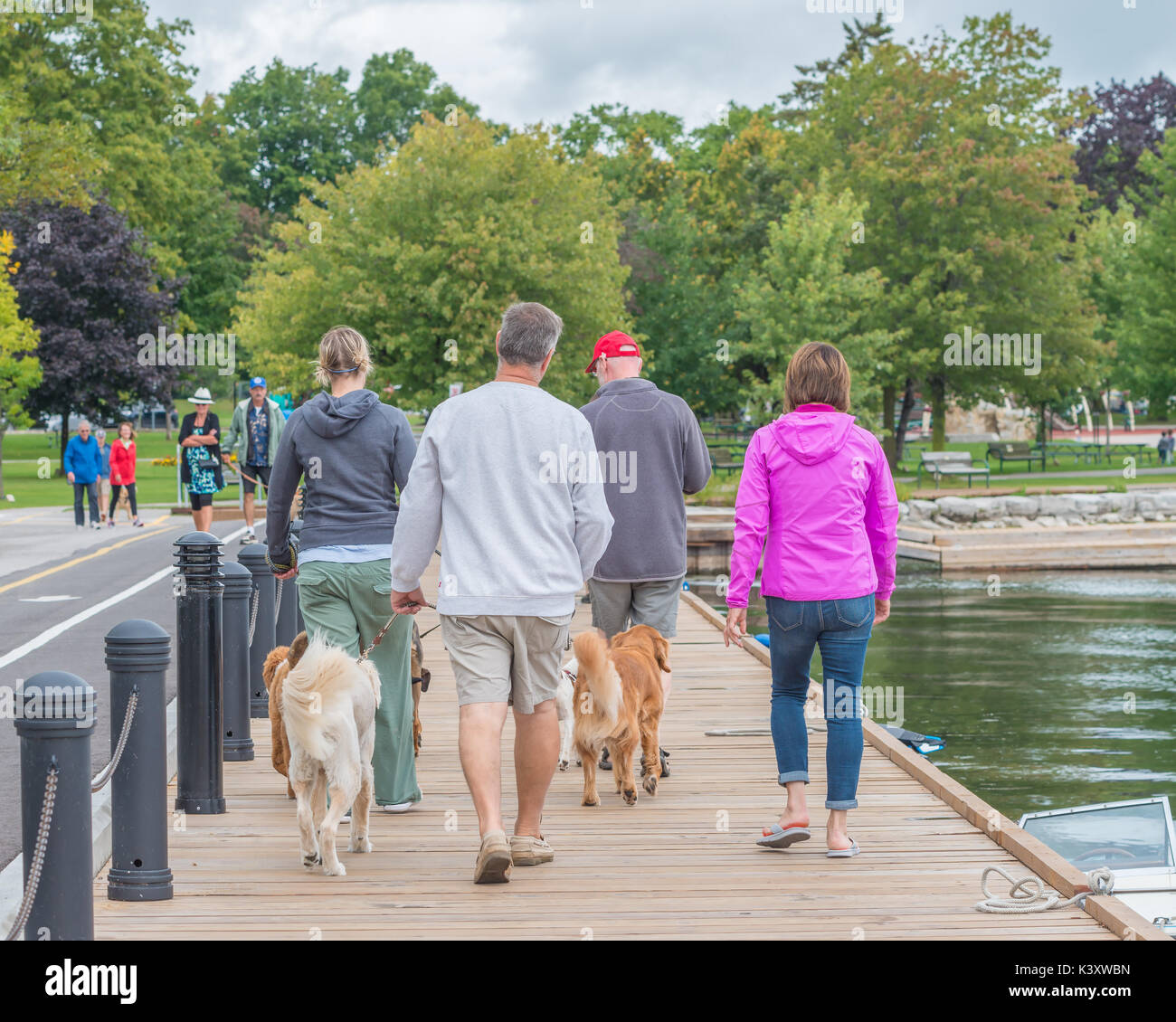People walking their dogs along the Couchiching Park boardwalk in Orillia Ontario Canada. - Stock Image
