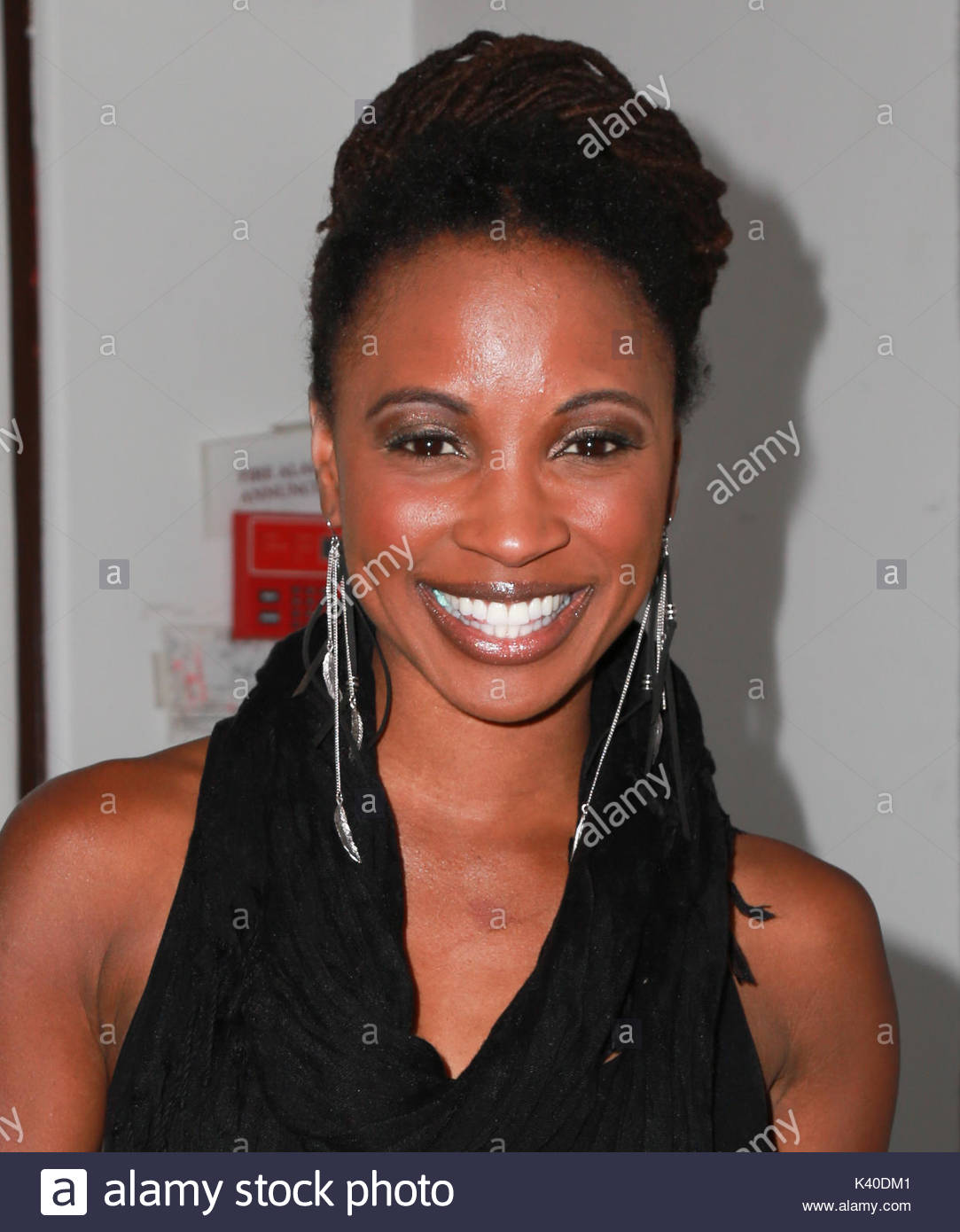 Celebrity Shanola Hampton nude (19 photos), Ass, Bikini, Instagram, butt 2006