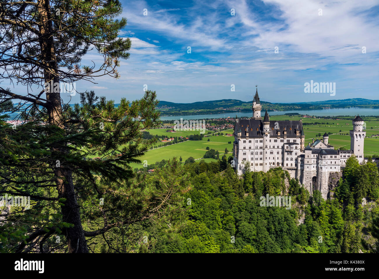 Neuschwanstein Castle or Schloss Neuschwanstein, Schwangau, Bavaria, Germany - Stock Image