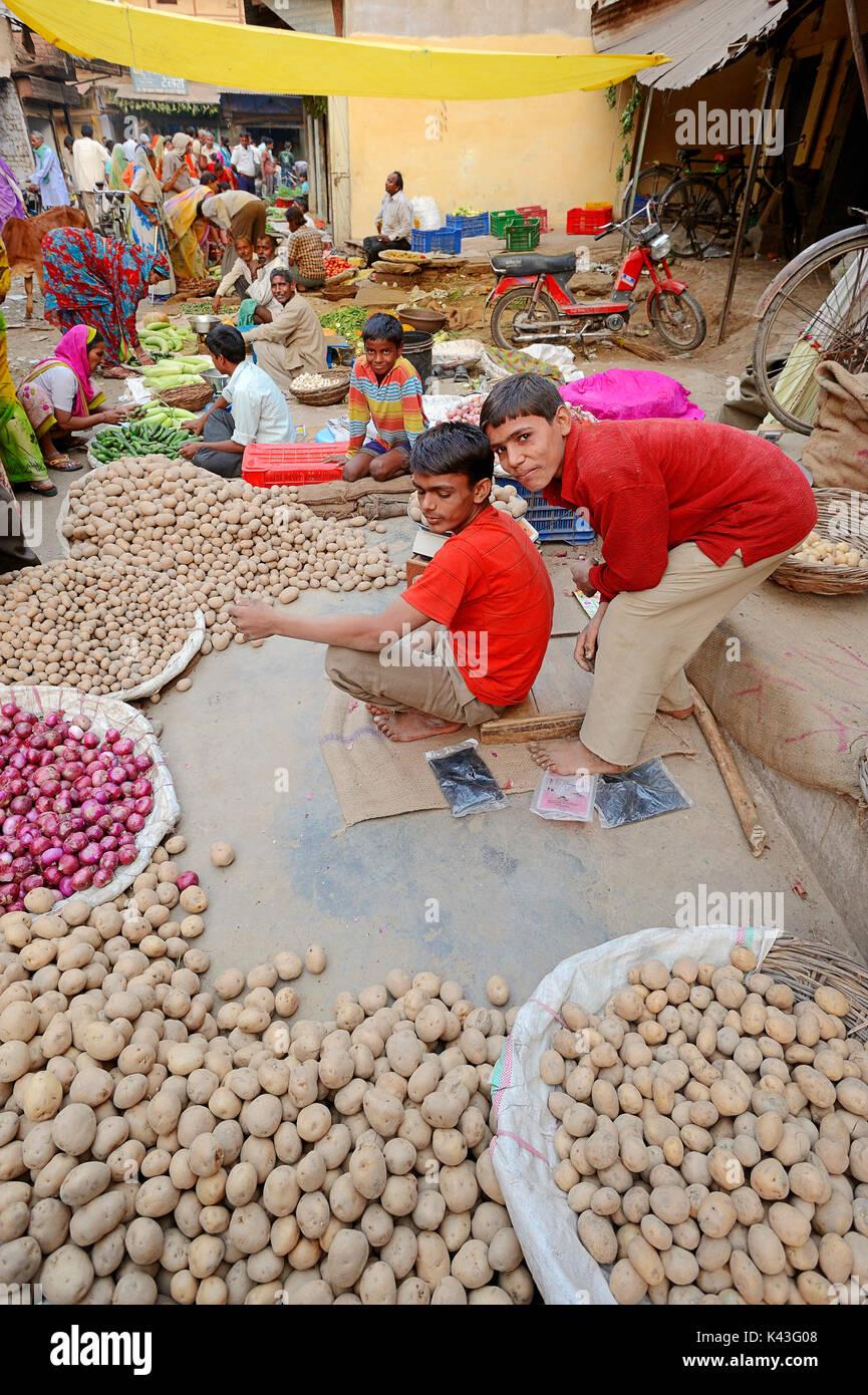 Marktstand mit Kartoffeln, Zwiebeln und Gemuese, Bharatpur, Rajasthan, Indien / (Solanum tuberosum), (Allium cepa) Stock Photo