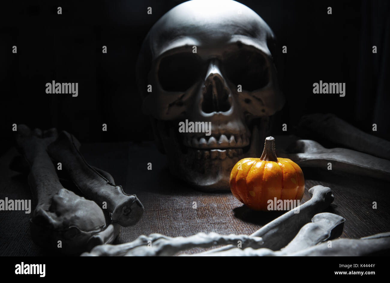 Human bones and skull on the table with Halloween pumpkin - Stock Image