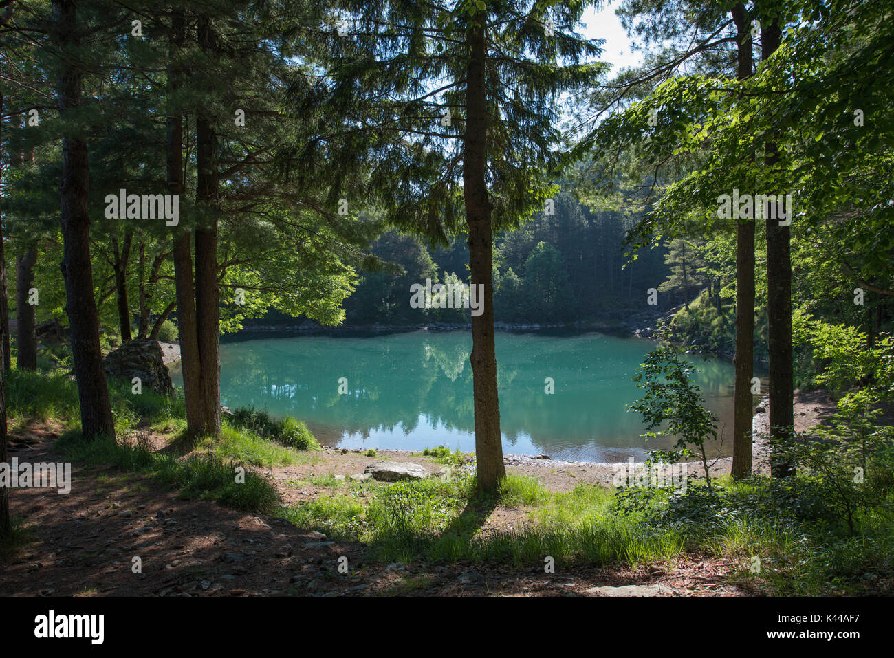 Aveto Valley Regional Park, Lame lake, Liguria, Italy. The glacial Lame lake with tree's reflection - Stock Image