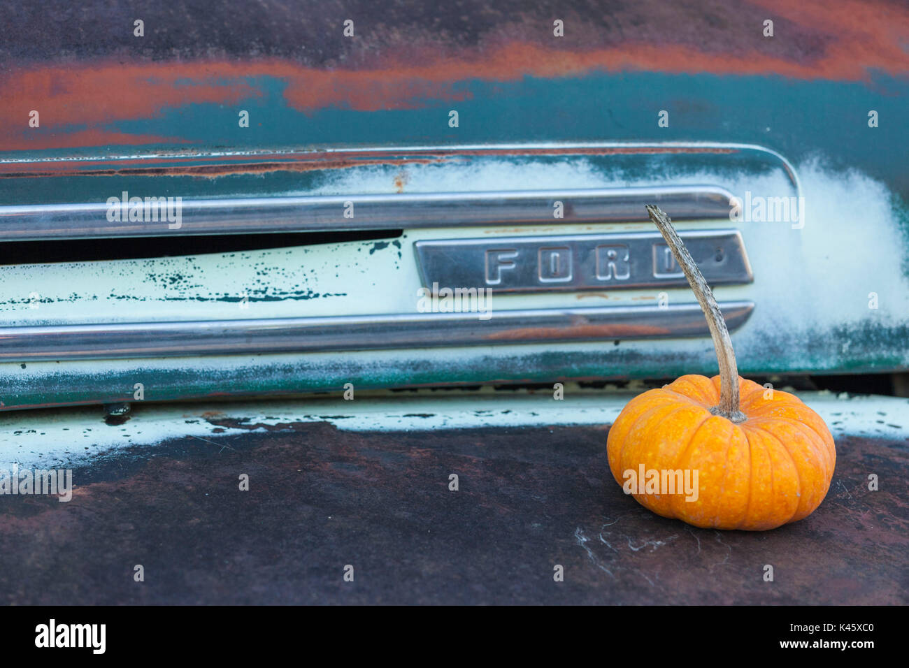 USA, New York, Adirondack Mountains, Bolton Landing, autumn pumpkins - Stock Image