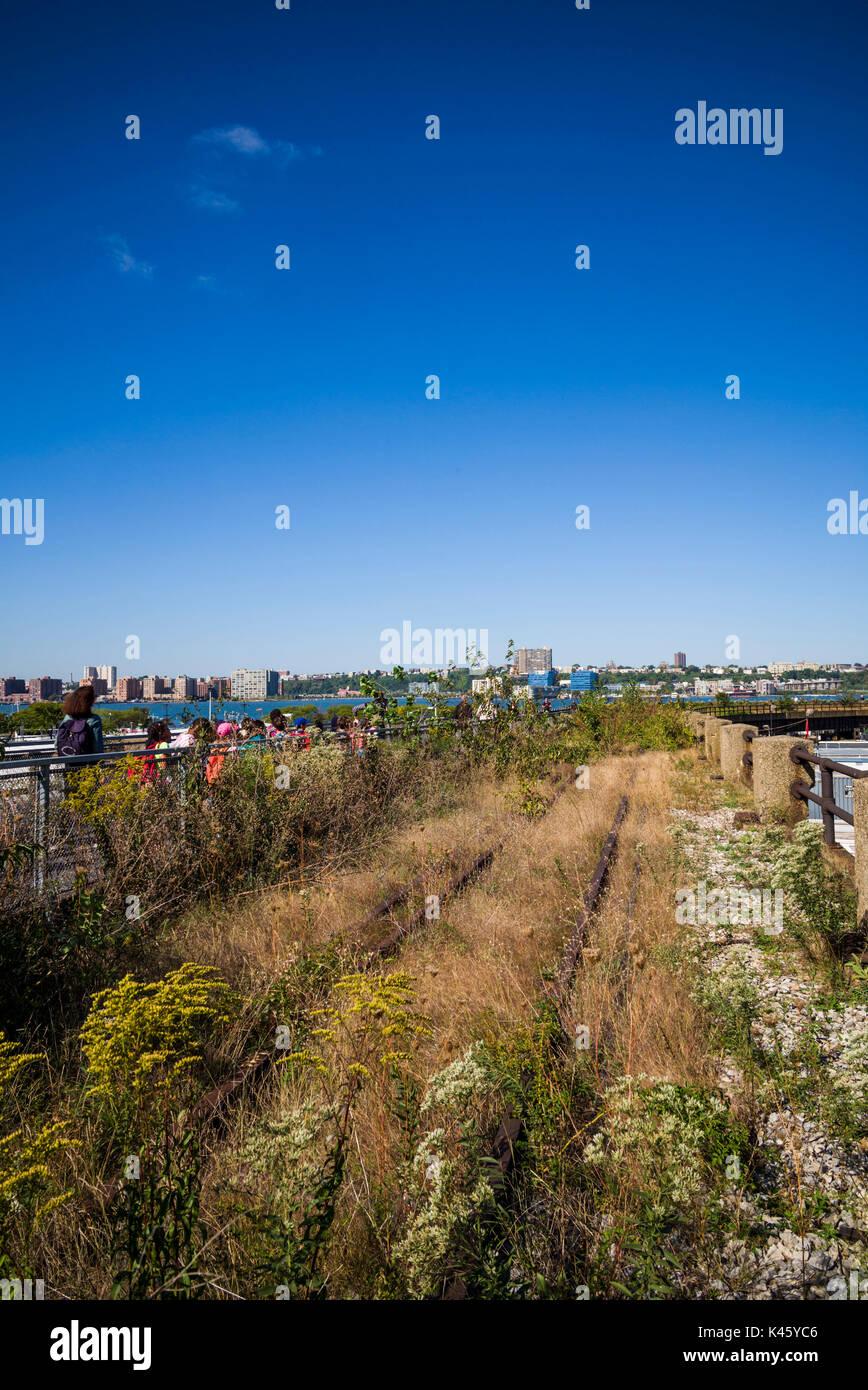 USA, New York, New York City, Lower Manhattan, old rail tracks of The High Line park - Stock Image