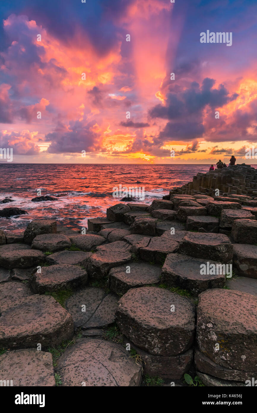 The Giant's Causeway is an area of about 40,000 interlocking basalt columns, the result of an ancient volcanic eruption. It is located in County Antri - Stock Image