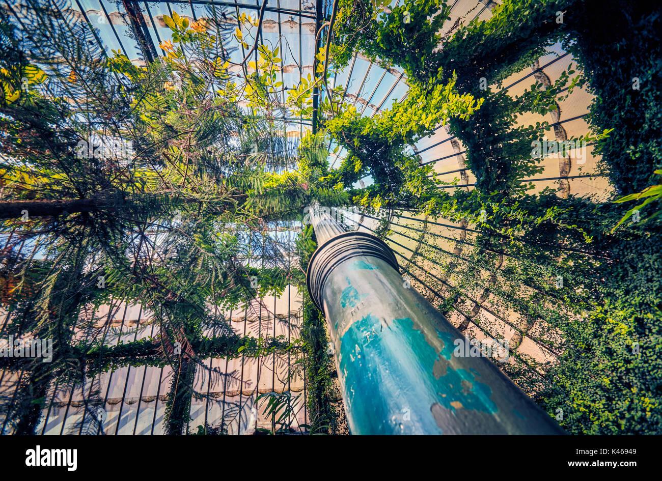 Greenhouse at the Royal Botanical Garden Madrid Spain Stock Photo