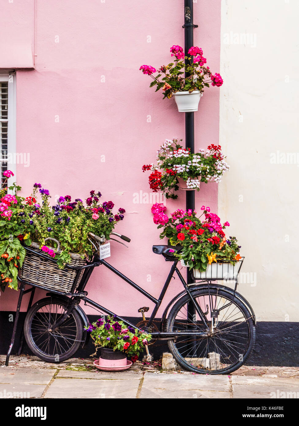 An Old Delivery Bike Used As A Plant Stand Outside A House In Dunster High  Street