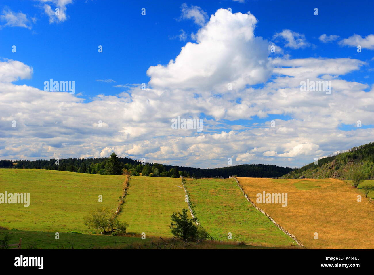 Subsistence agricultural landscape in the mountains of Montenegro - Stock Image
