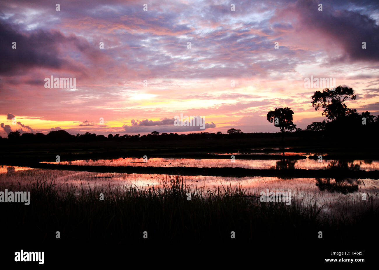 A colorful sunset landscape with clouds in the sky in Sri Lanka - Stock Image