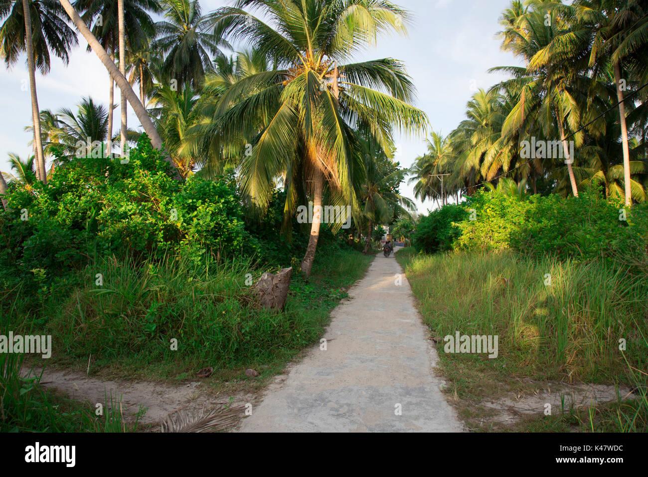 Main road around Derawan Island, Kalimantan - Stock Image