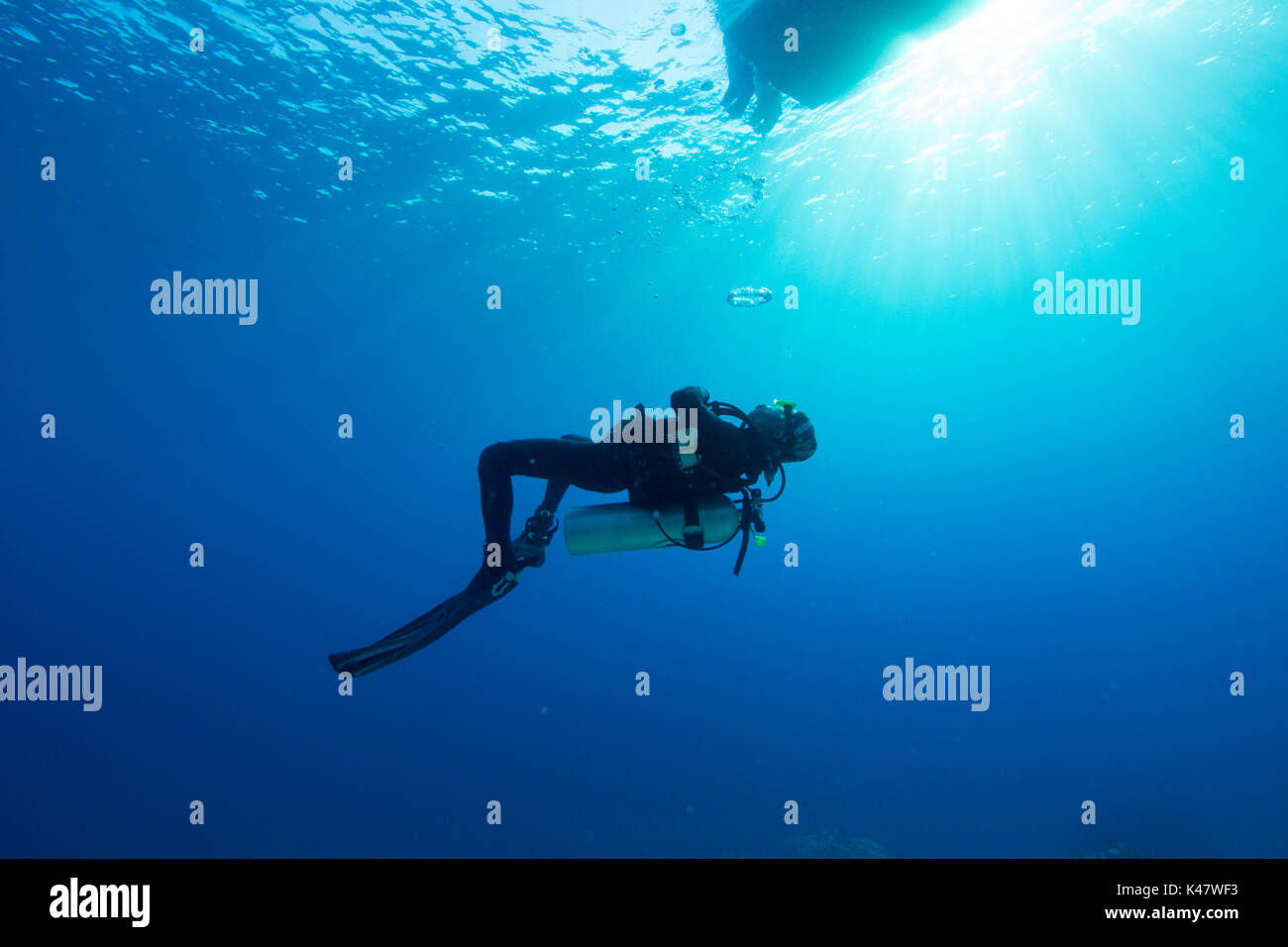 bubble the of swimmer toroidal ring rings stock photo vortex pool generating also at bottom called a swimming
