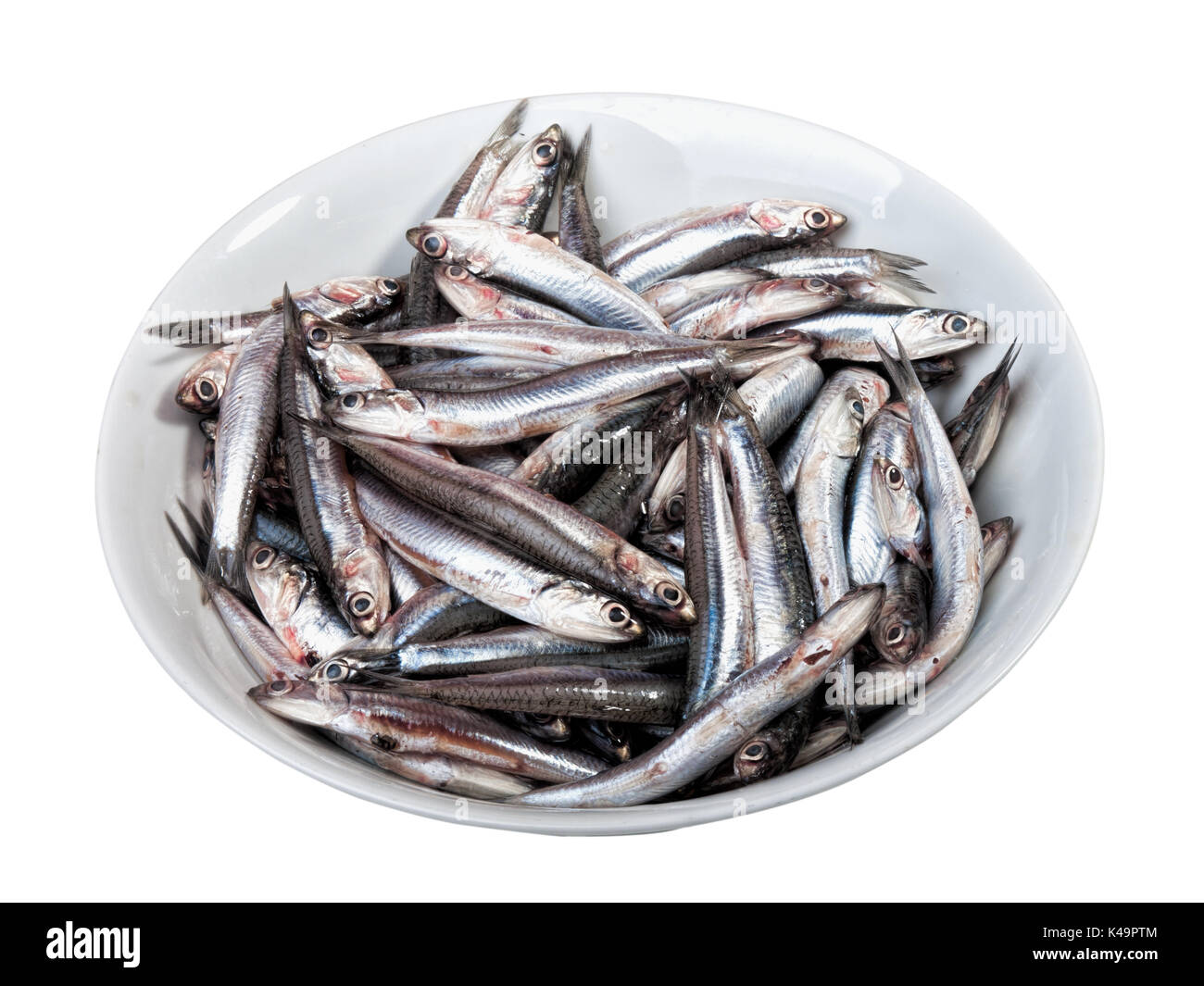 Raw Anchovies In A Plate Ready For Preparing In The Kitchen - Stock Image