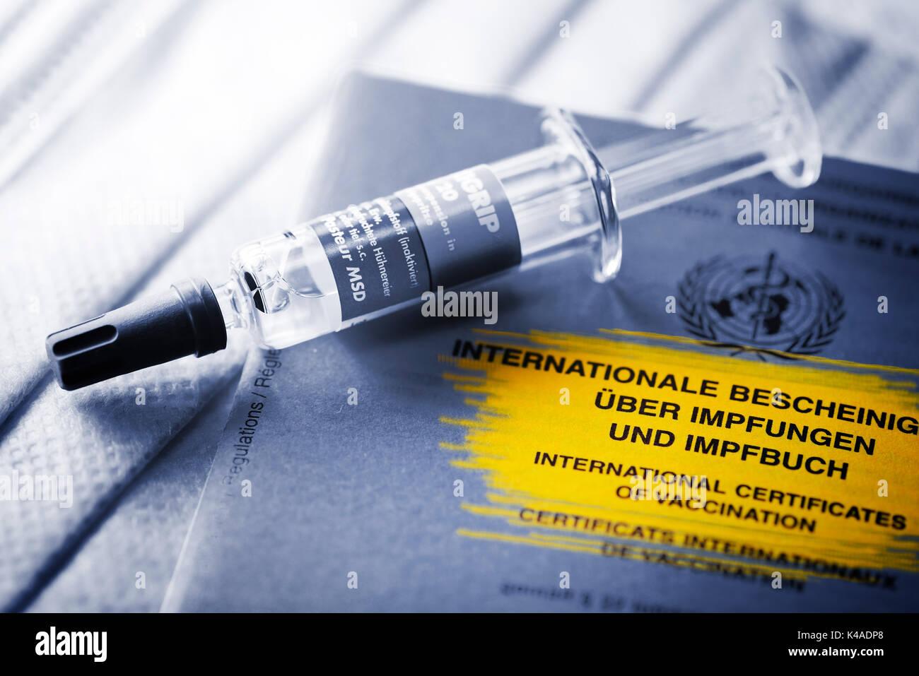 Syringe On Vaccination Record Stock Photo