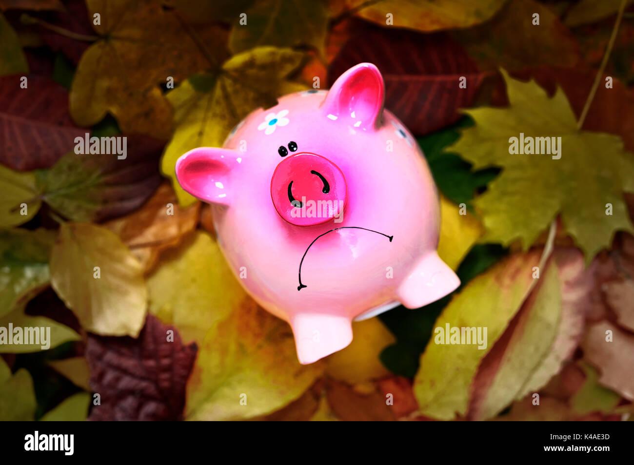 Bad Mood Piggy Bank, Low Interest Rates - Stock Image