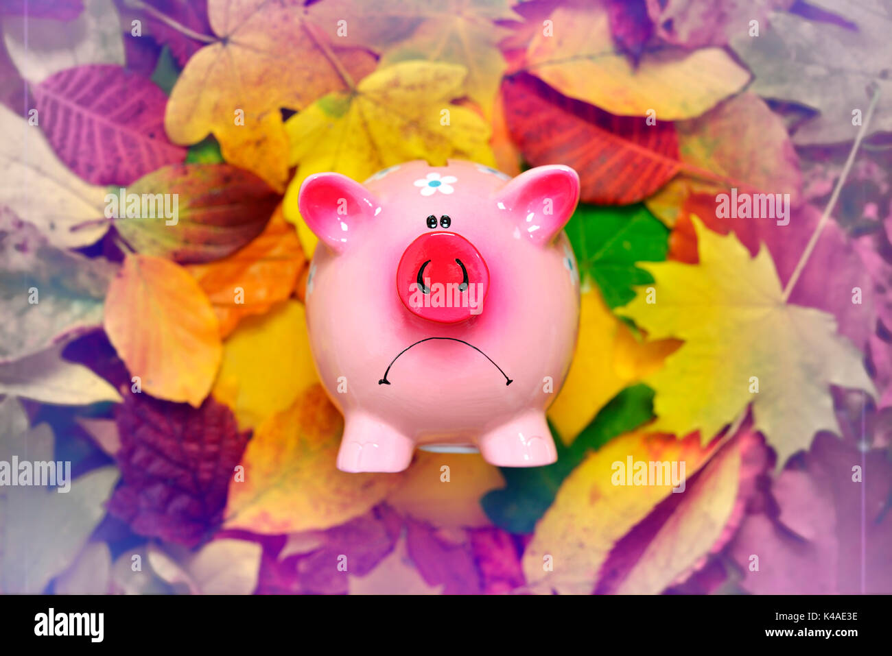 Bad Mood Piggy Bank, Low Interest Rates - Stock Image