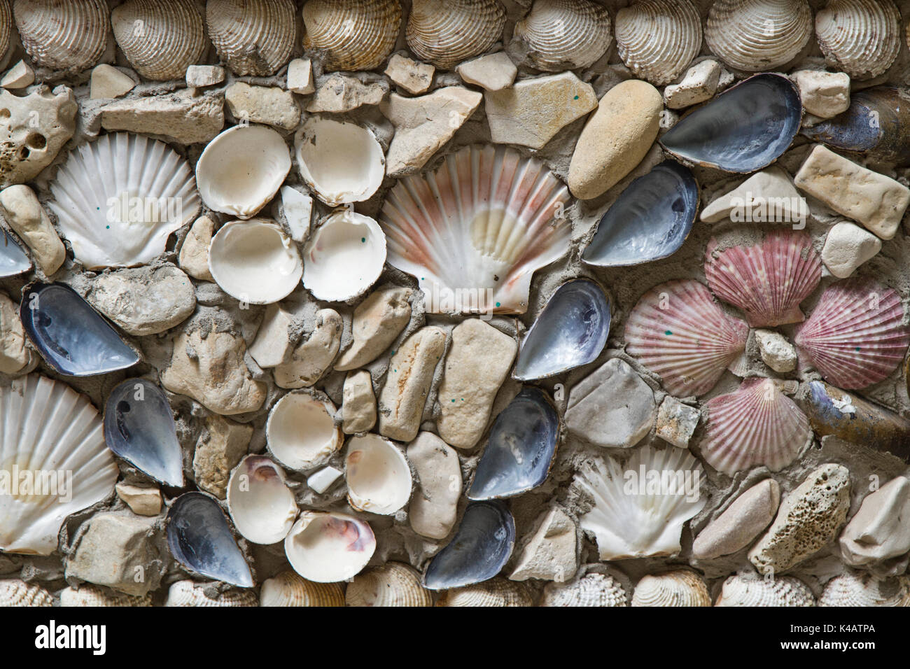 Many Different Types Of Shells Adorn This Wall - Stock Image