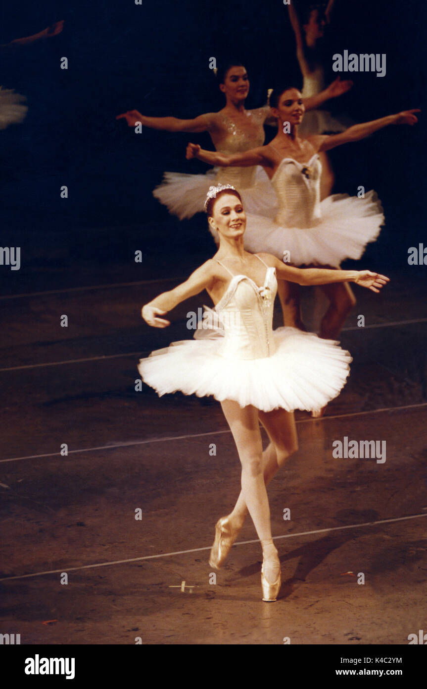 BALLERINOR on stage  2011 - Stock Image