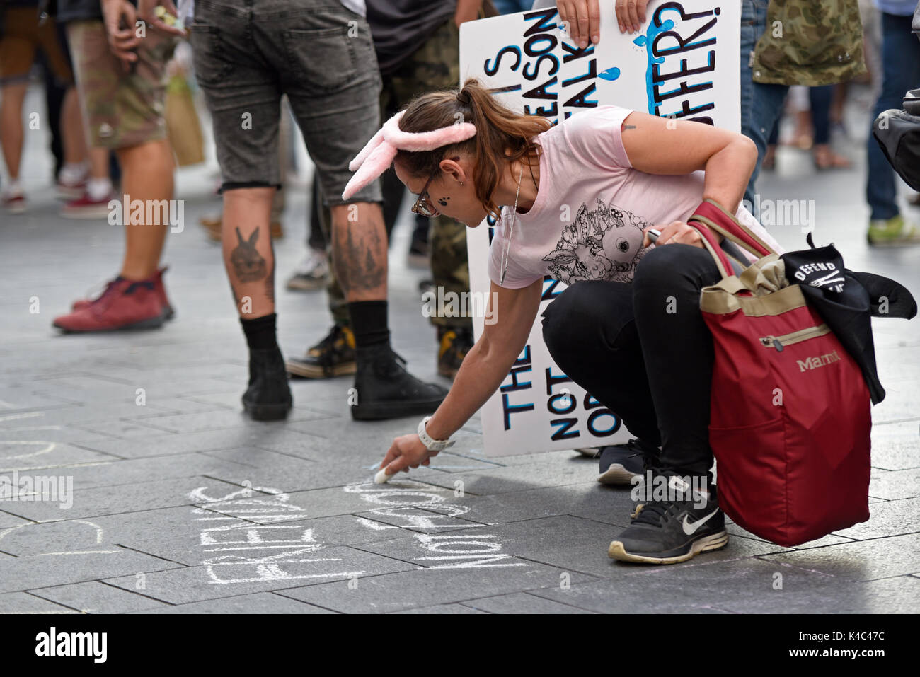 Animal rights activists protesting outside Burger King in Leicester Square, London. Female activist chalking slogans on pavement - Stock Image
