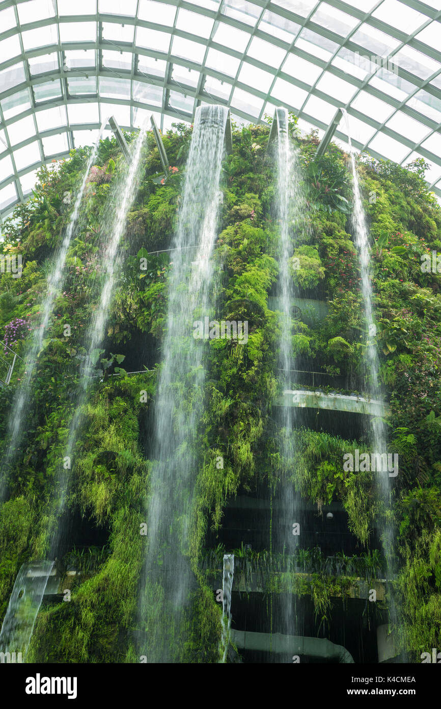 Swell Worlds Largest Waterfall In A Greenhouse Cloud Forest Home Interior And Landscaping Oversignezvosmurscom