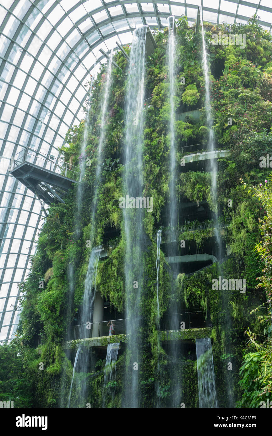Sensational Worlds Largest Waterfall In A Greenhouse Cloud Forest Home Interior And Landscaping Oversignezvosmurscom