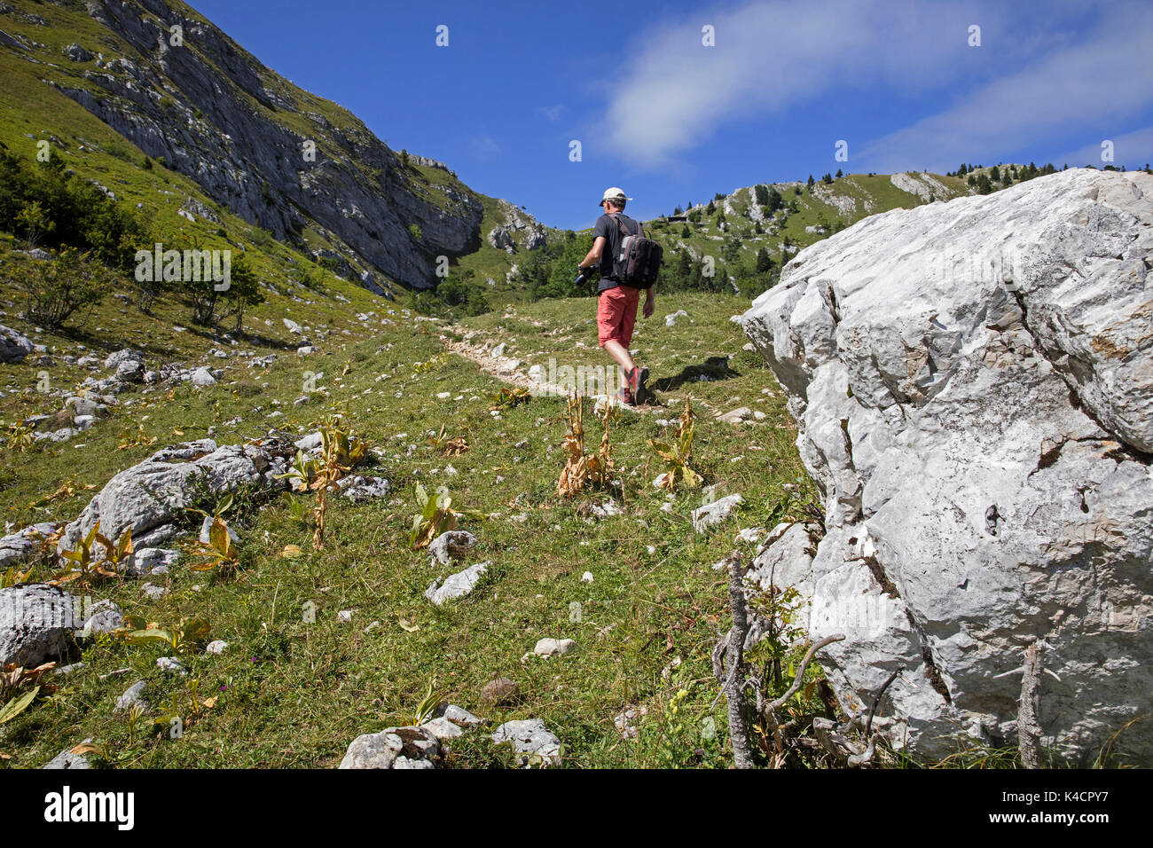 Mountain walker walking along hiking trail in the Jura at the French-Swiss border near Les Dappes and Les Rousses, Bourgogne-Franche-Comté, France - Stock Image