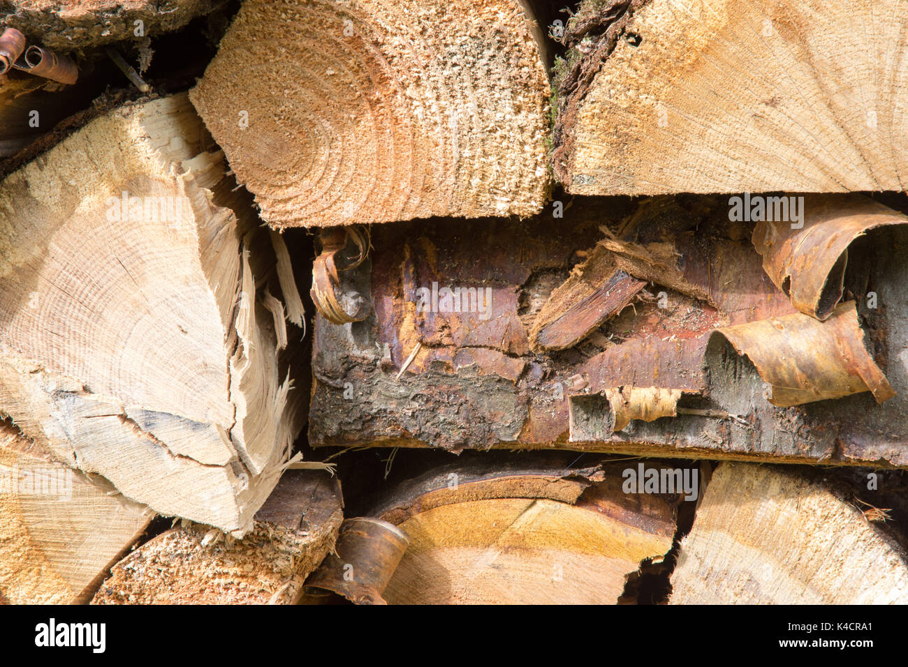 Freshly split and stacked logwood (firewood) Mainly hardwood. Renewable fuel source. 42 images photographed from a range of distances and angles. - Stock Image