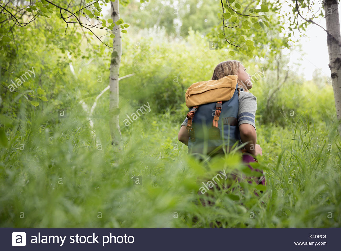 Curious teenage girl with backpack hiking in tall grass in woods - Stock Image