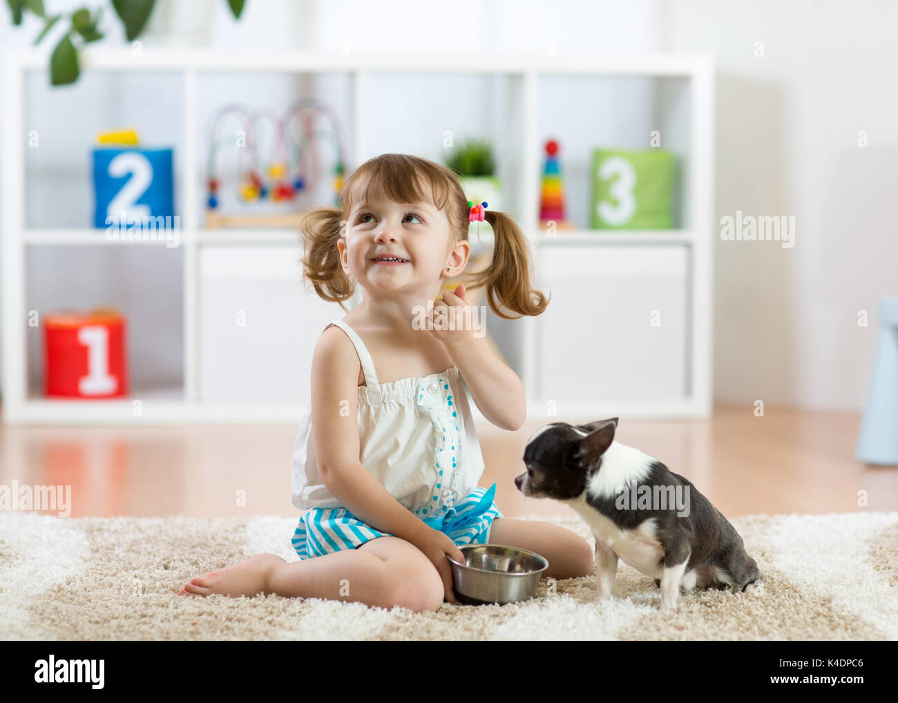 Cute child girl feeding his pet dog - Stock Image