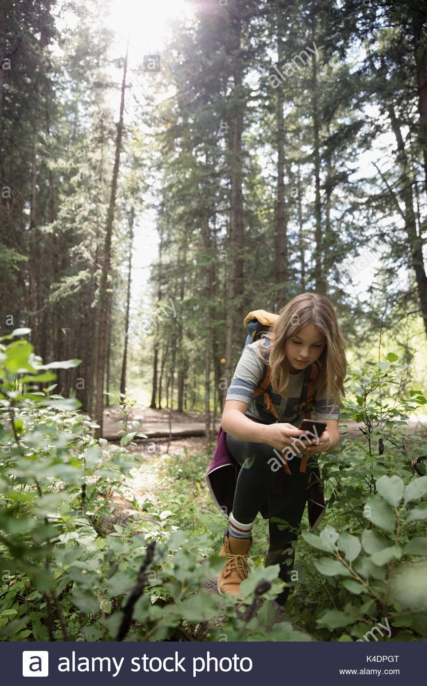 Teenage girl with camera phone photographing undergrowth plants in sunny woods Stock Photo