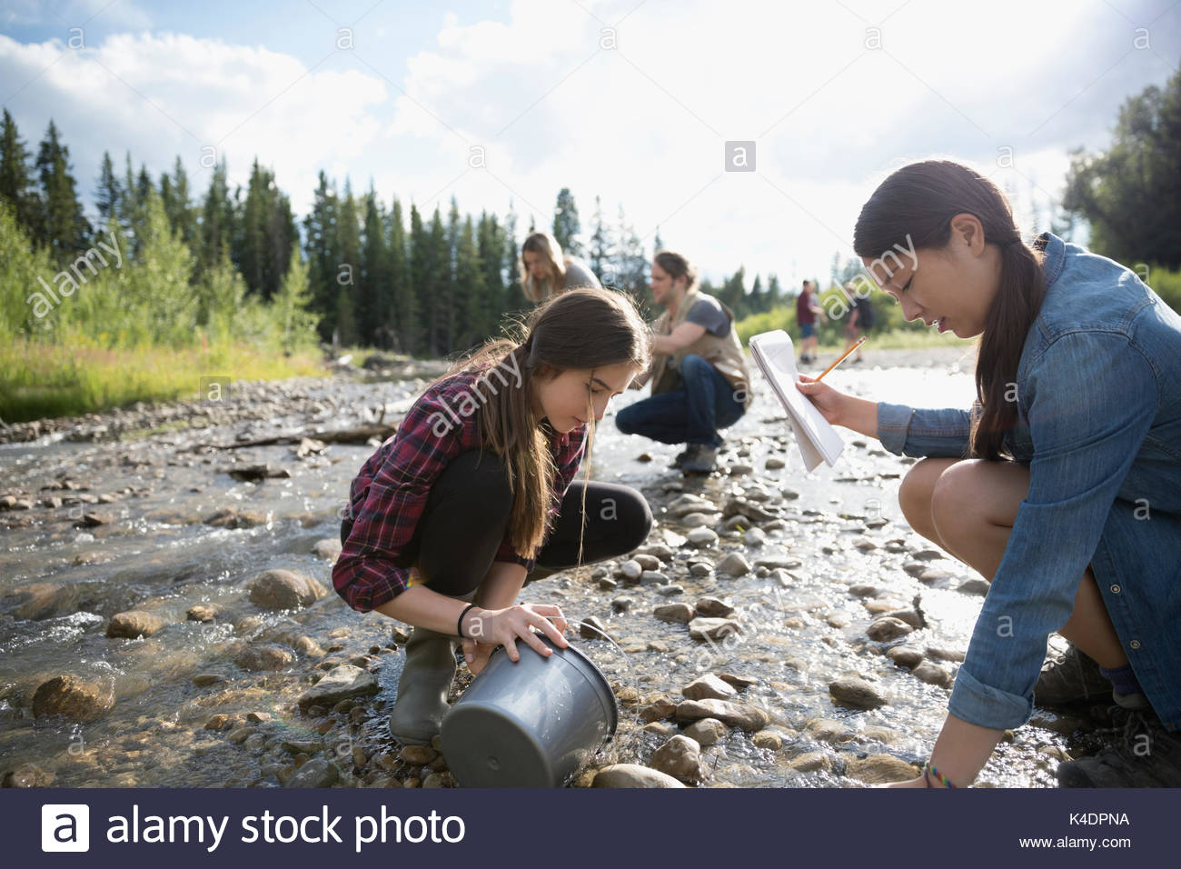 Teenage outdoor school students exploring, collecting samples and taking notes at stream Stock Photo