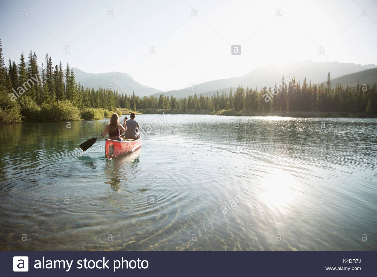Couple paddling canoe with oar on sunny summer lake - Stock Image