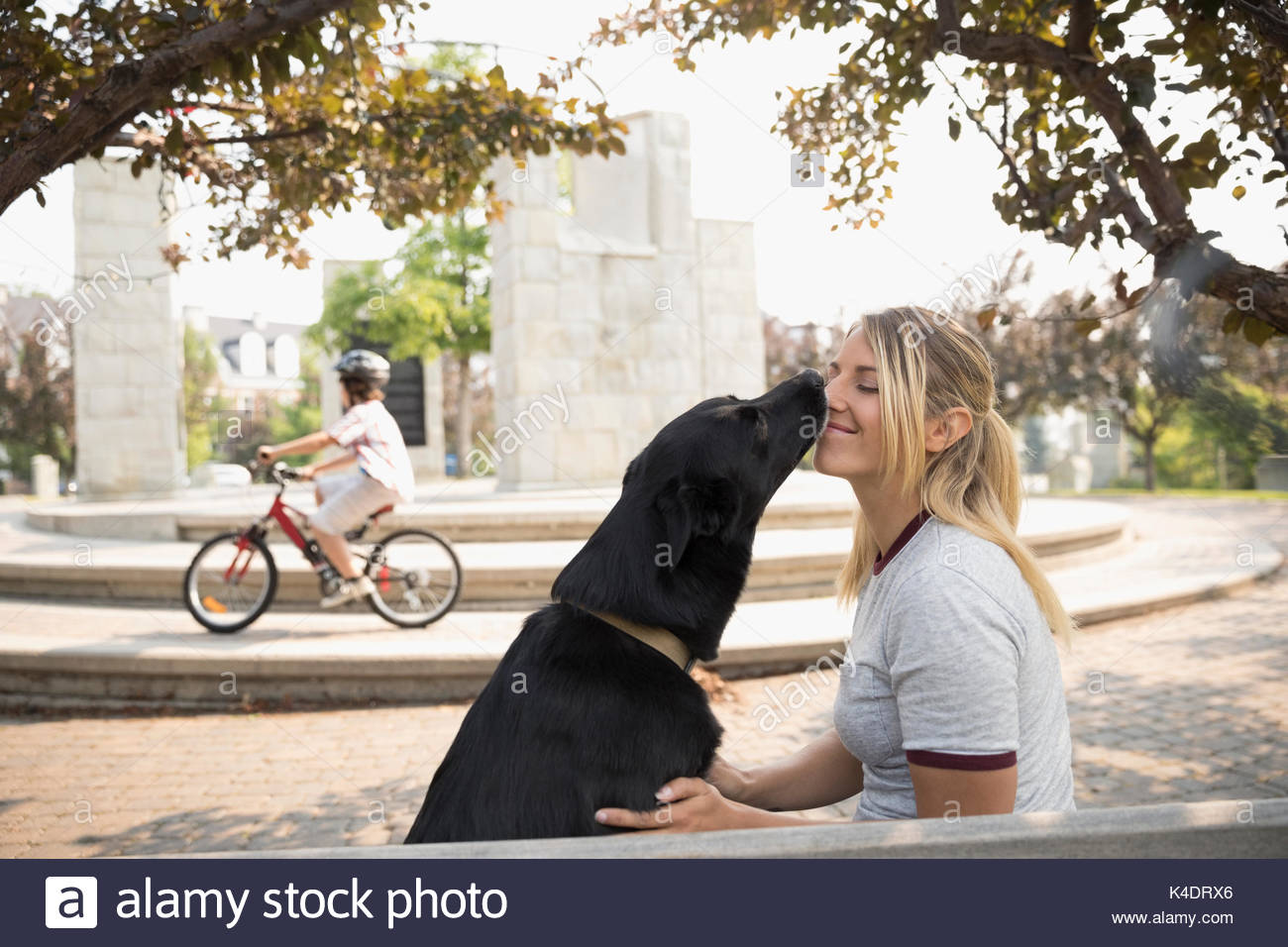 Dog kissing, licking female pet owner in park - Stock Image