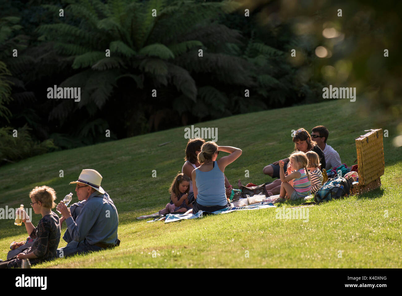 Picnic - families enjoying a picnic on the lawn at Trebah Garden in Cornwall. - Stock Image
