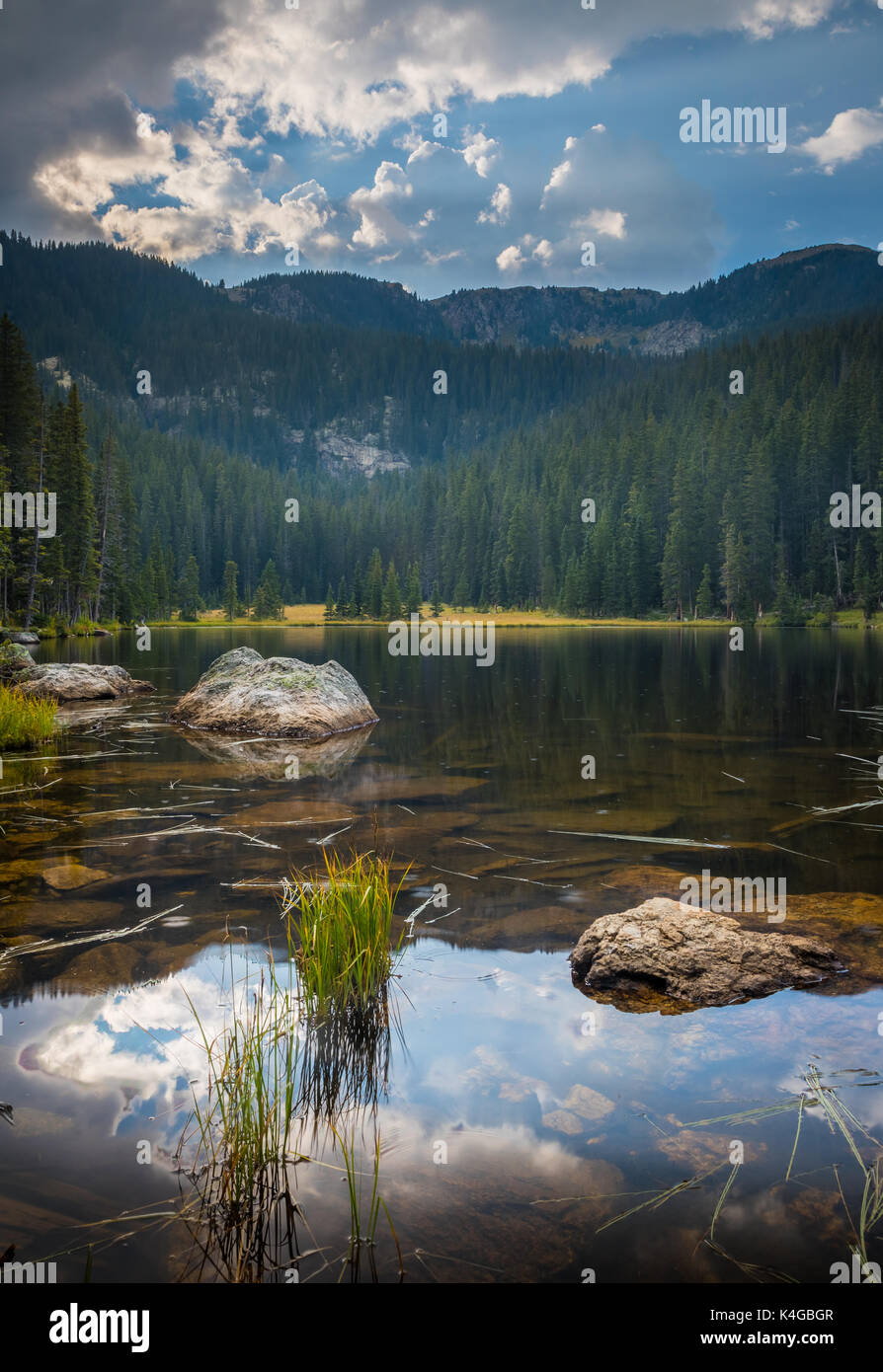 ThePecos Wildernessis a protectedwilderness areawithin theSanta Fe National ForestandCarson National Forest. Stock Photo