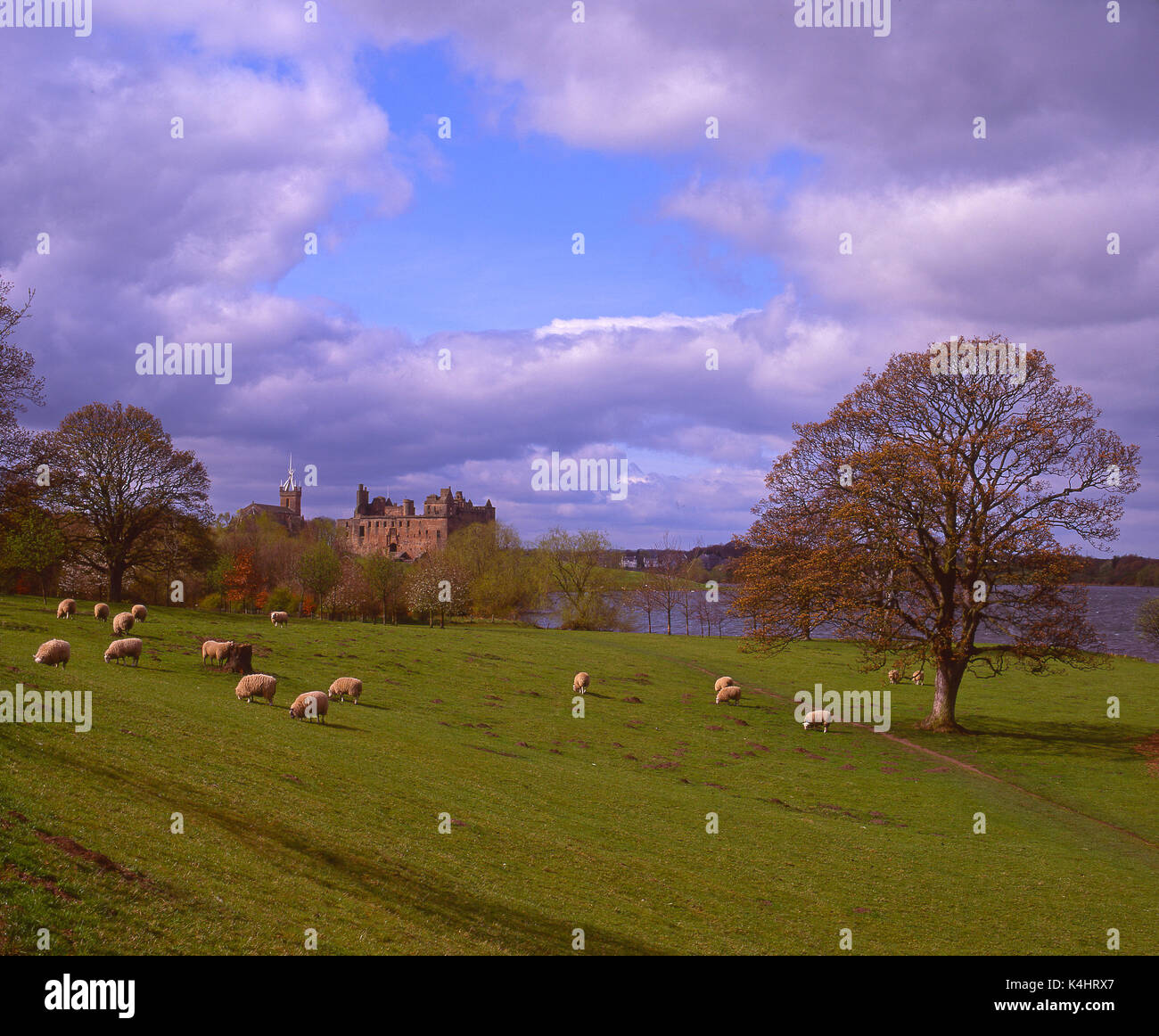 Spring view of Linlithgow Palace, Linlithgow, West Lothian Stock Photo