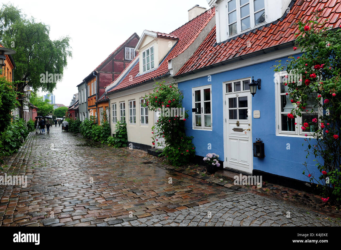 Colourful houses along Møllestien, a picturesque cobbled street right in the centre of Aarhus. It is regarded by many as the most beautiful street in  - Stock Image