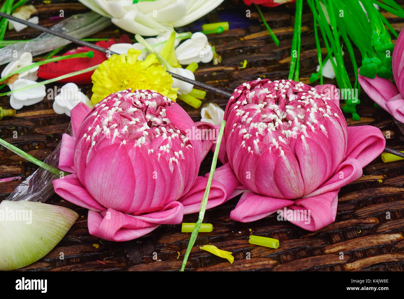 Lotus flowers for sale at hindu temple in bangkok thailand stock lotus flowers for sale at hindu temple in bangkok thailand izmirmasajfo