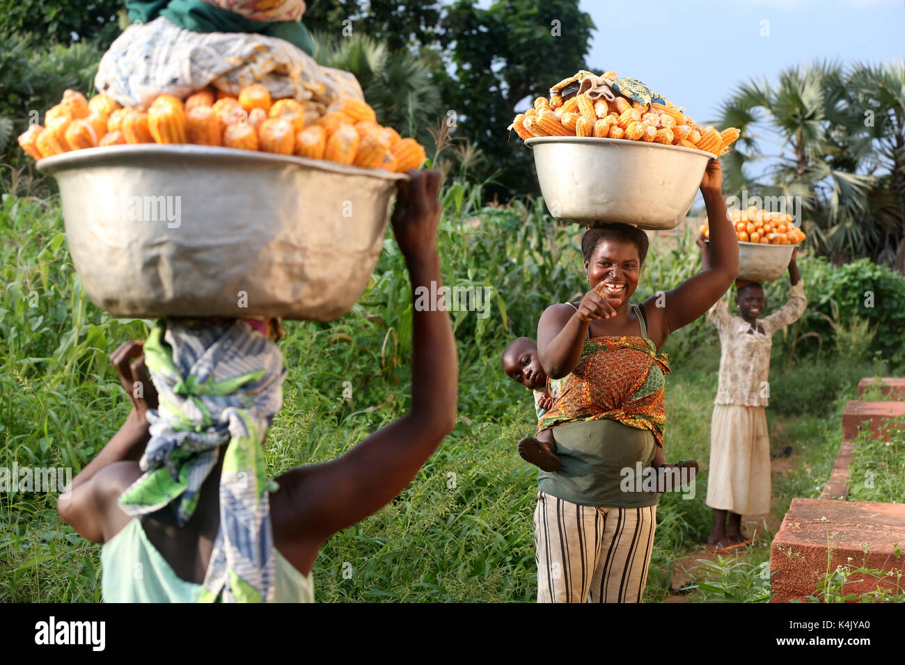 Women carrying platter with corn on head, Sotouboua, Togo, West Africa, Africa - Stock Image