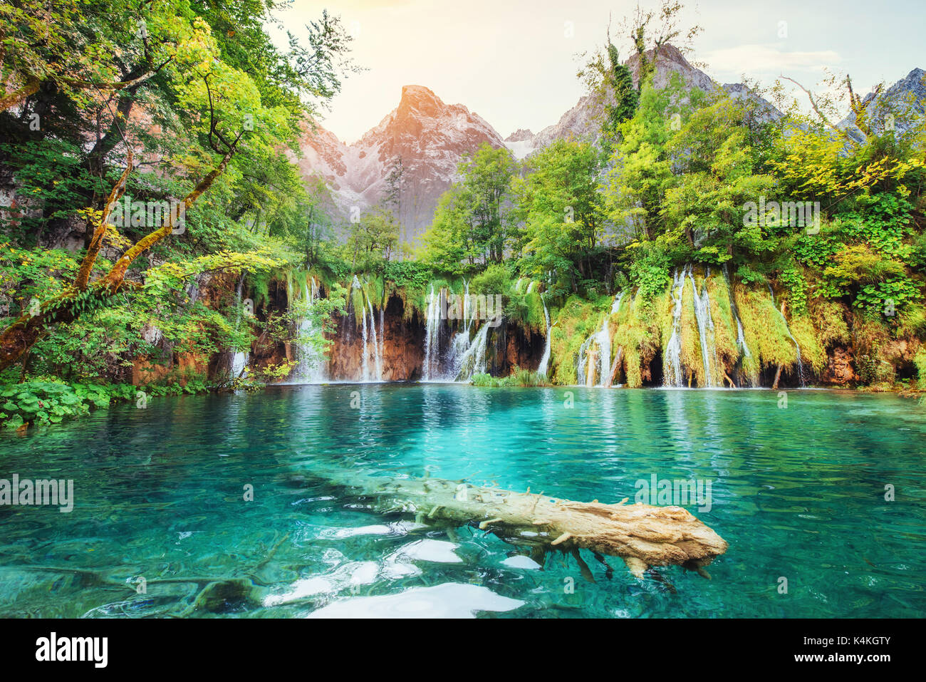 A photo of fishes swimming in a lake, taken in the national park Plitvice Croatia - Stock Image