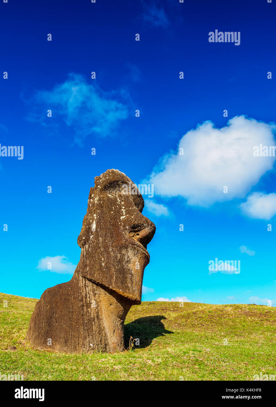 Moai at the quarry on the slope of the Rano Raraku Volcano, Rapa Nui National Park, Easter Island, Chile - Stock Image