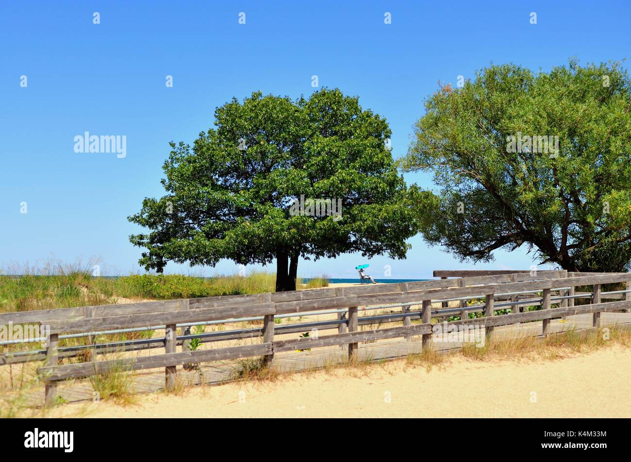 Zion, Illinois, USA. A lone beach-goer, a woman in a beach chair rests on the sand near a pair of trees at Illinois Beach State Park. - Stock Image