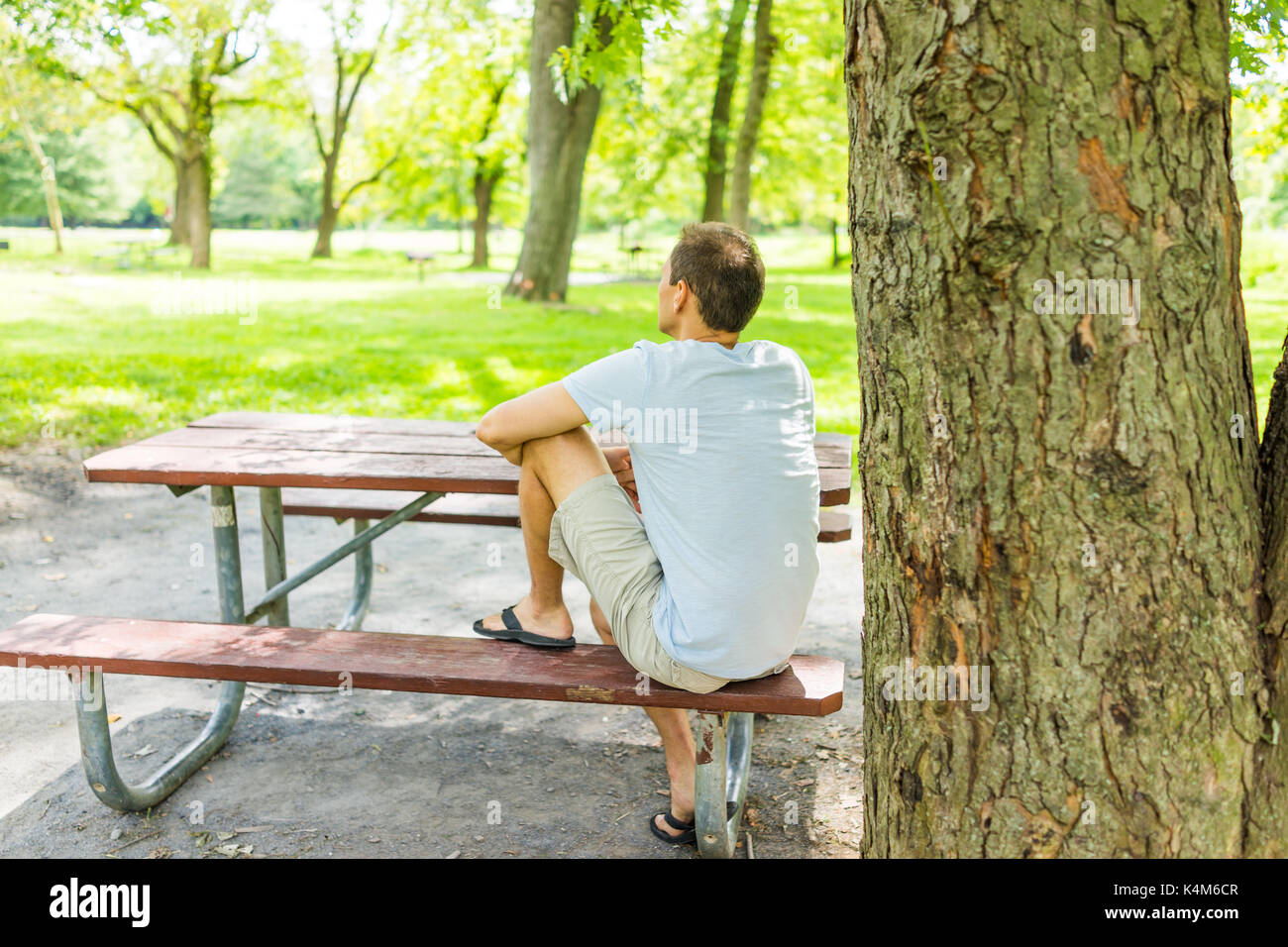 Admirable Back Of Young Man Sitting On Red Picnic Table Bench By Tree Ibusinesslaw Wood Chair Design Ideas Ibusinesslaworg