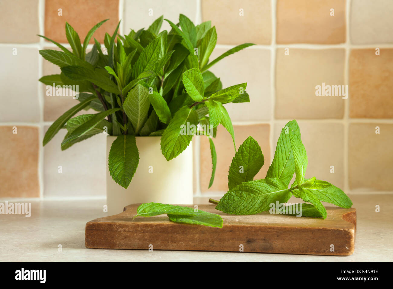 Sprigs of fresh garden mint leaves in a ceramic pot and also placed on a small wooden chopping board on a kitchen counter shot in natural light. - Stock Image
