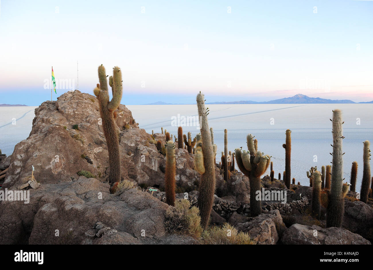Sunrise view of the Salar de Uyuni from the Isla del Pescado, a hilly and rocky outcrop of land in the middle of the salt flats - Stock Image
