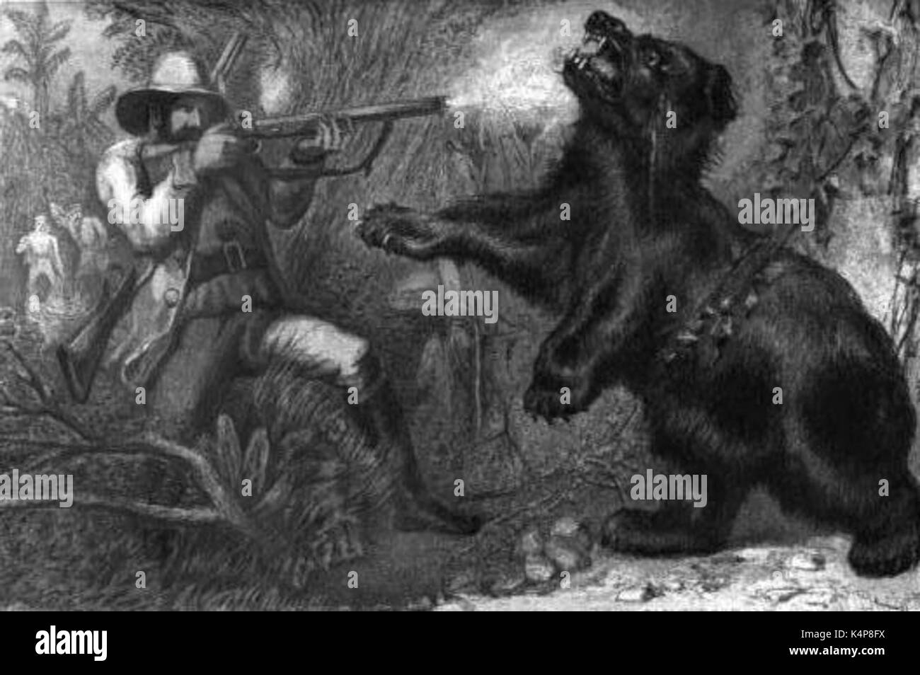 An Asian black bear, shot after charging the 'Old Shekarry', as illustrated in Wild Sports of the World: A Boy's Book of Natural History and Adventure, 1862 - Stock Image