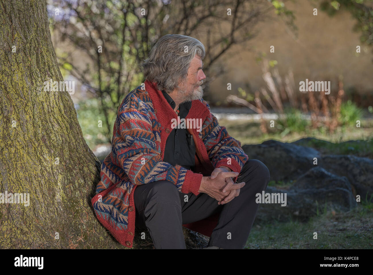 Alpinist Reinhold Messner under his favorite tree at Juval Castle in South Tyrol, Italy - Stock Image
