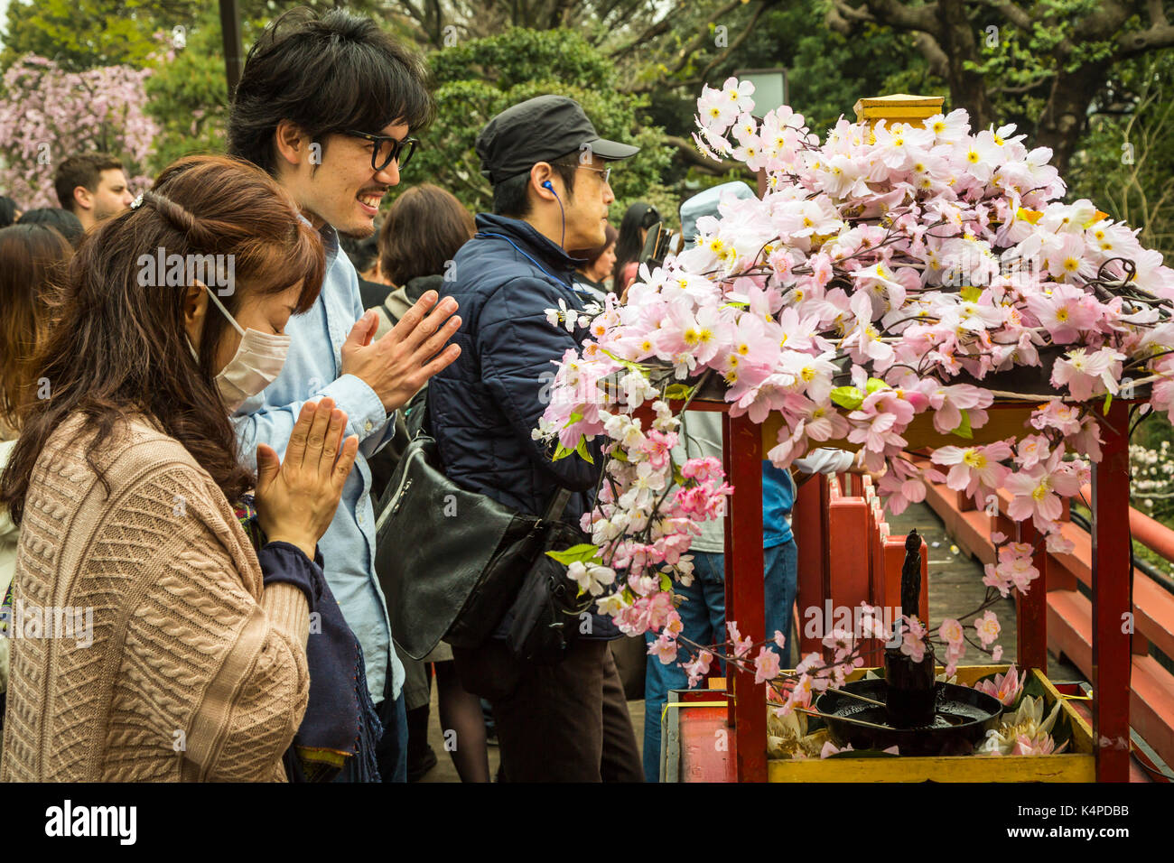 Cherry blossoms and Japanese worshipers at a Buddhist shrine in Ueno Onshi Park, Taito, Tokyo, Japan, Asia. - Stock Image