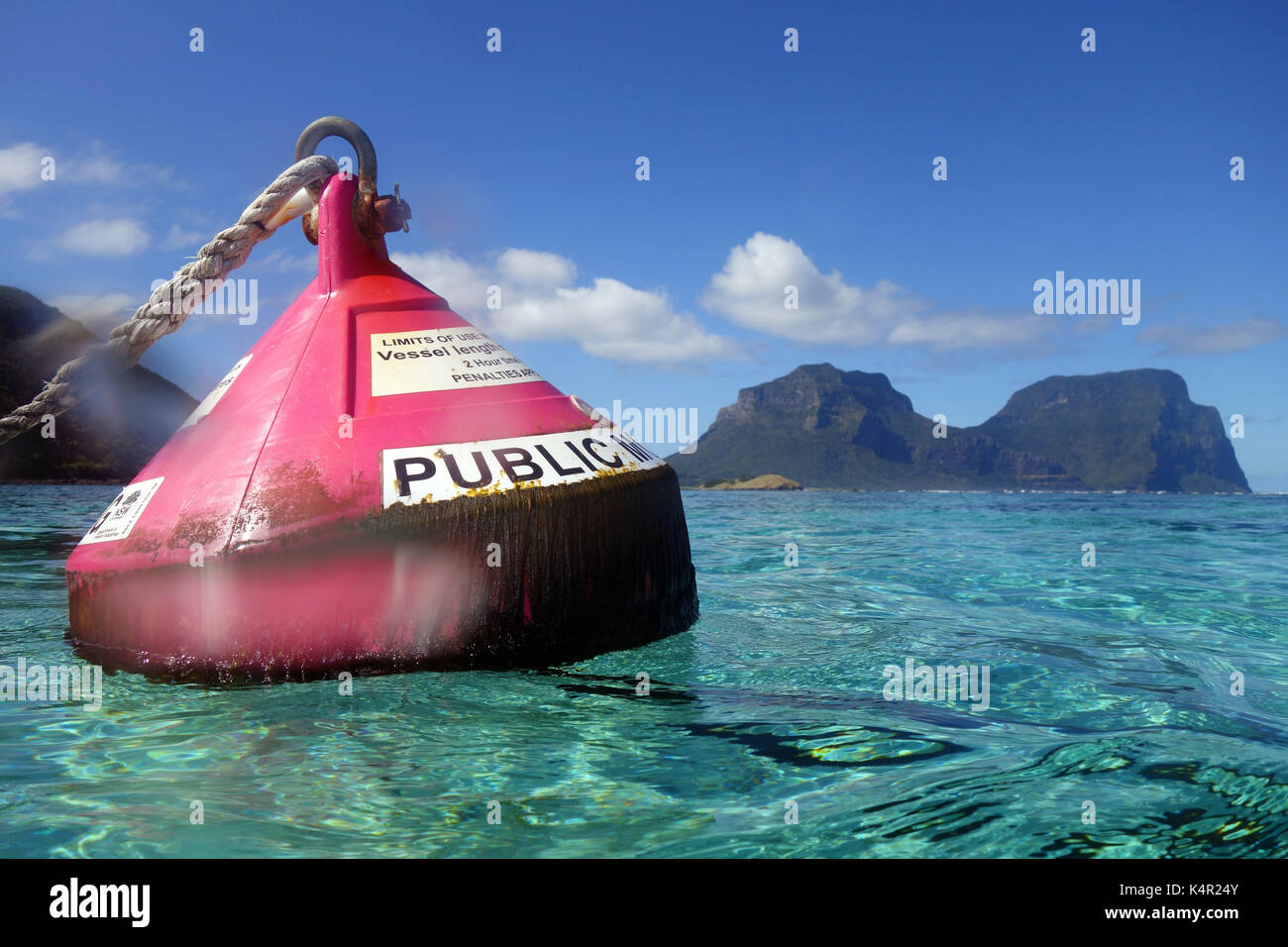 Pink public mooring buoy in North Bay marine protected area, Lord Howe Island lagoon, NSW, Australia. No PR - Stock Image