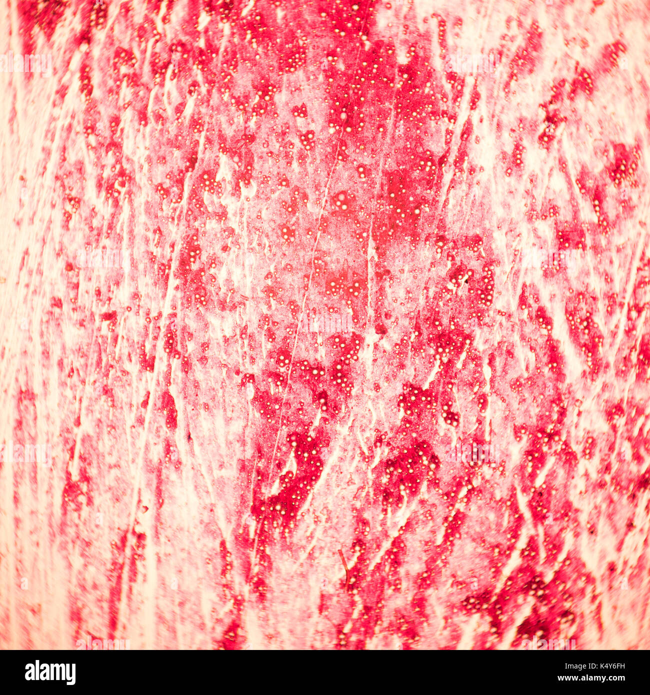 Anatomy Histology Cytology Stock Photos & Anatomy Histology Cytology ...